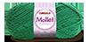 Mollet_5545