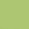 Massa Biscuit_Verde Folha