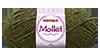 Mollet_5899