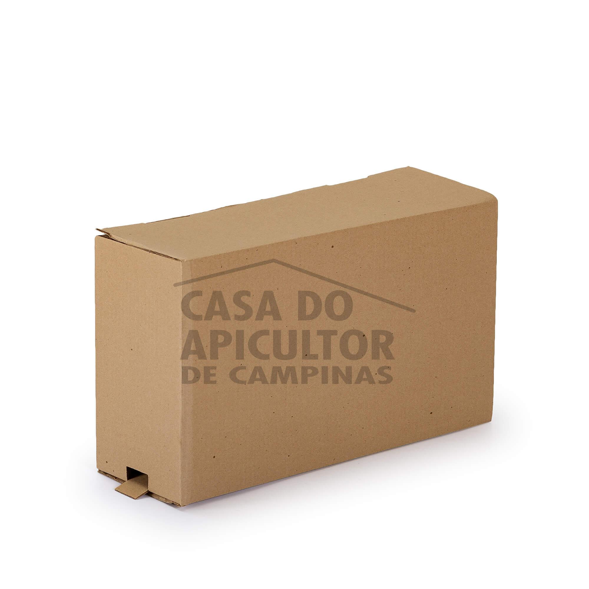 Caixa isca para abelhas em papelão
