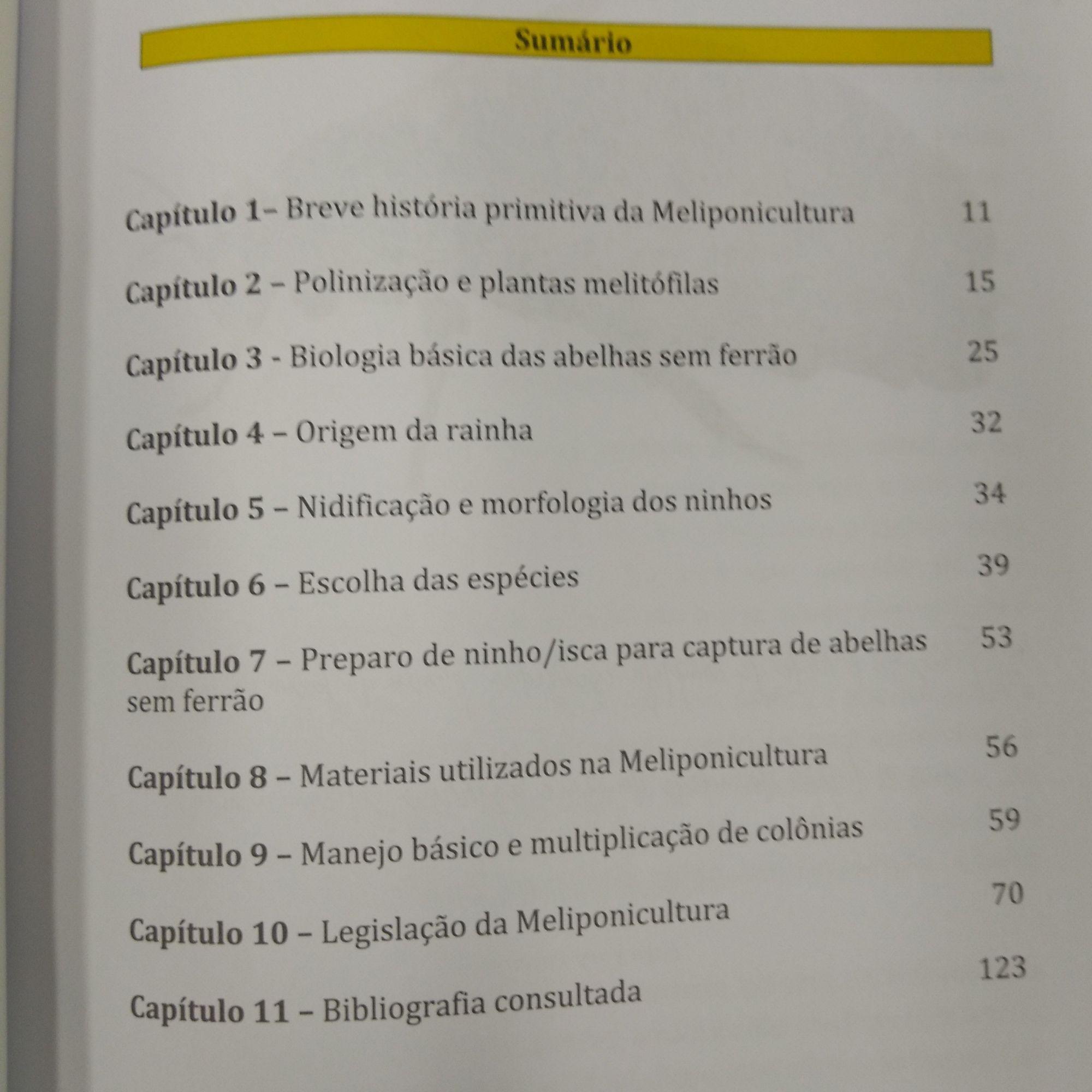 Meliponicultura para iniciantes - Dra Genna Souza