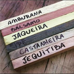 KIT ALL WOOD PLUS + TAÇA + madeiras para sensorial grátis