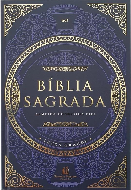 Bíblia Leitura Perfeita | ACF | Capa Dura Tesouro Sagrado