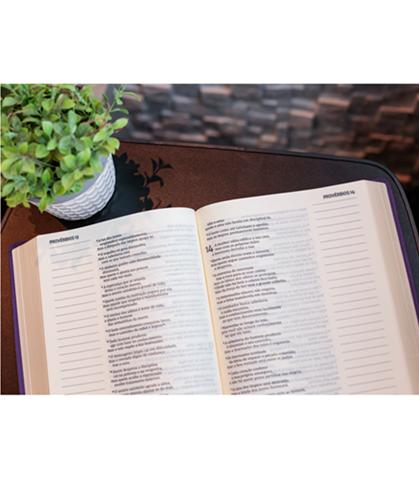 Bíblia Leitura Perfeita com Anotação   NVI - Capa Roxa