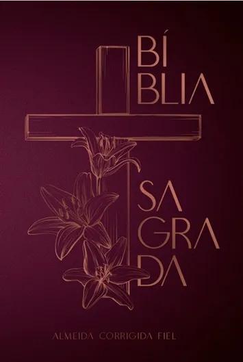 Kit Teologia Livro Por Livro