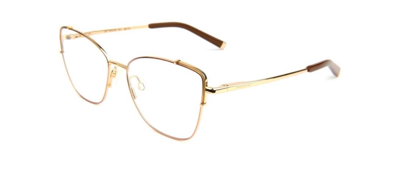 Óculos de Grau Ana Hickmann Dourado/Marrom AH1396 - 01D/54