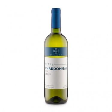 Cepas Chardonnay - Campos de Cima