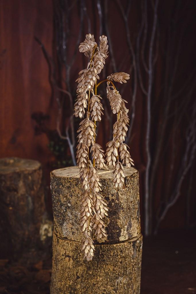 Galho Decorativo Champanhe