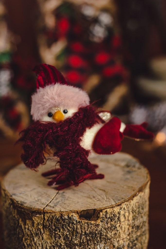Pássaro Scarf Ruby