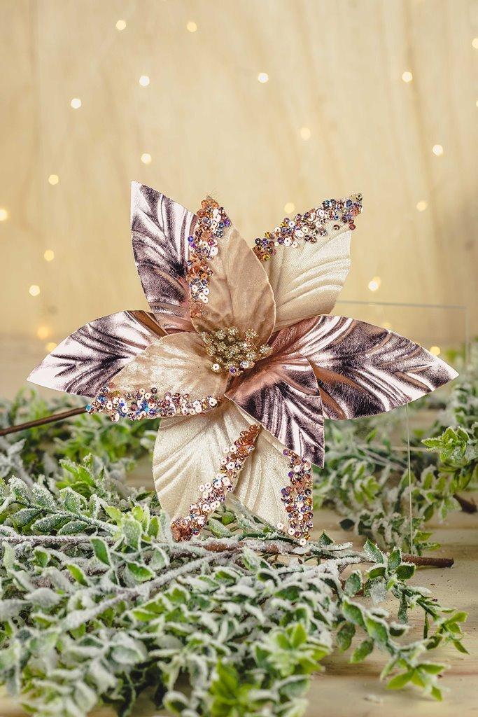 Poinsetia Decorativa