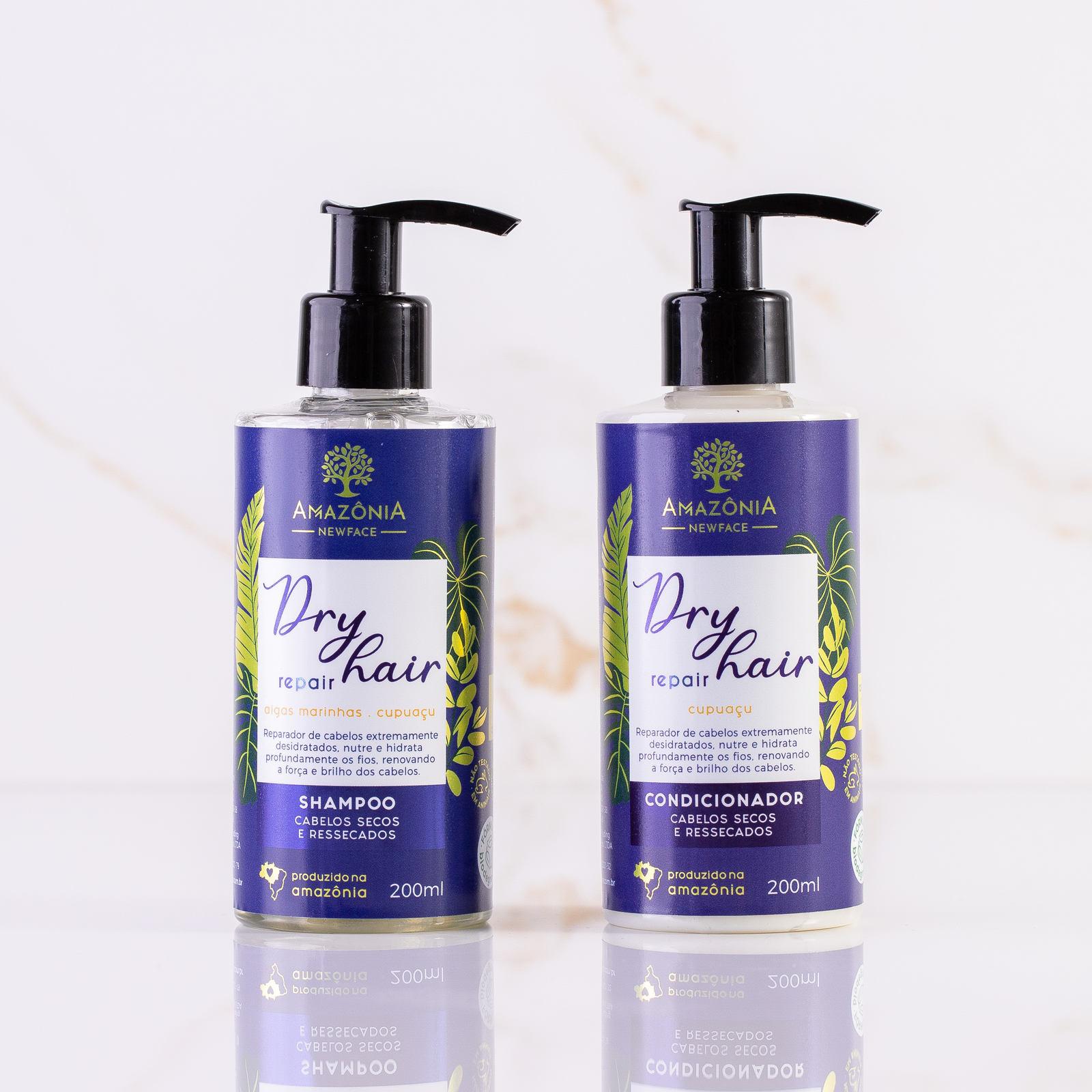 Kit Dry Hair Repair