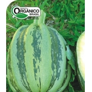 Abóbora Mogango Sul Mineiro 100% Orgânica