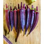 Quiabo Carcará (17 sementes)
