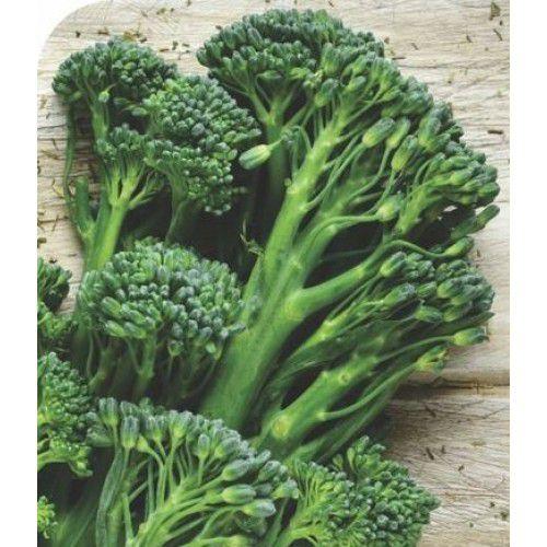 Couve Brócoli Híbrida Fabulous