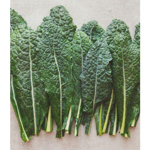Couve Kale Floribela