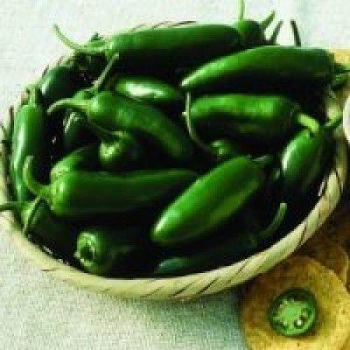 Pimenta Híbrida Ibiraja Jalapenho