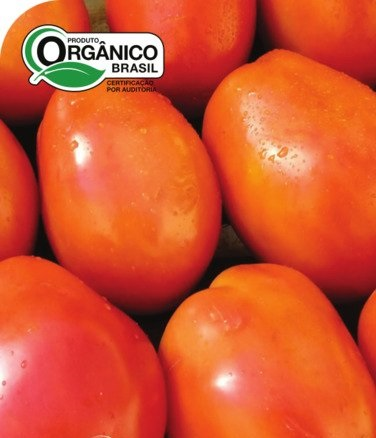 Tomate IPA 6 100% Orgânica