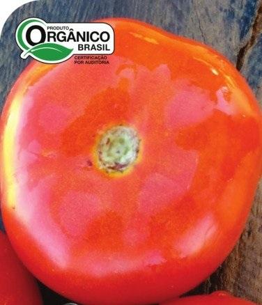 Tomate Kaiçara 100% Orgânica