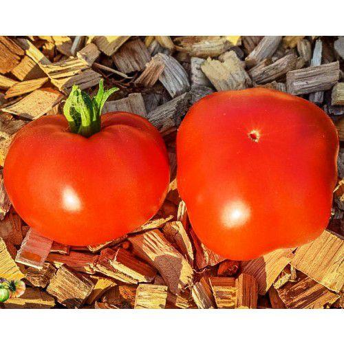 Tomate Super Marmande (Gaúcho/Maçã)