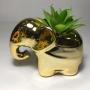 Vaso Elefante Cerâmica com Suculenta Artificial