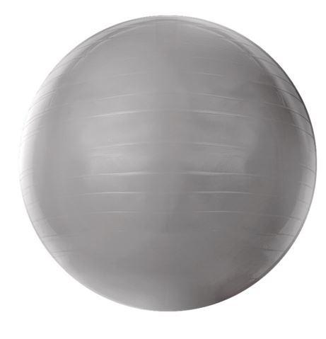 GYM BALL 55 CM COM BOMBA DE AR CINZA T9-55 - ACTE