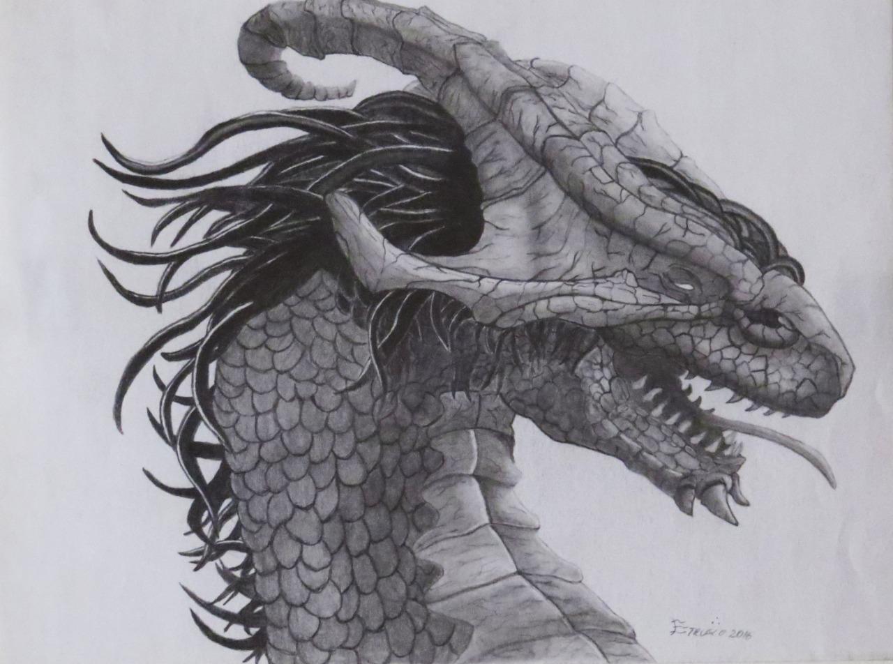 Dragão por Arnaldo Etrusco