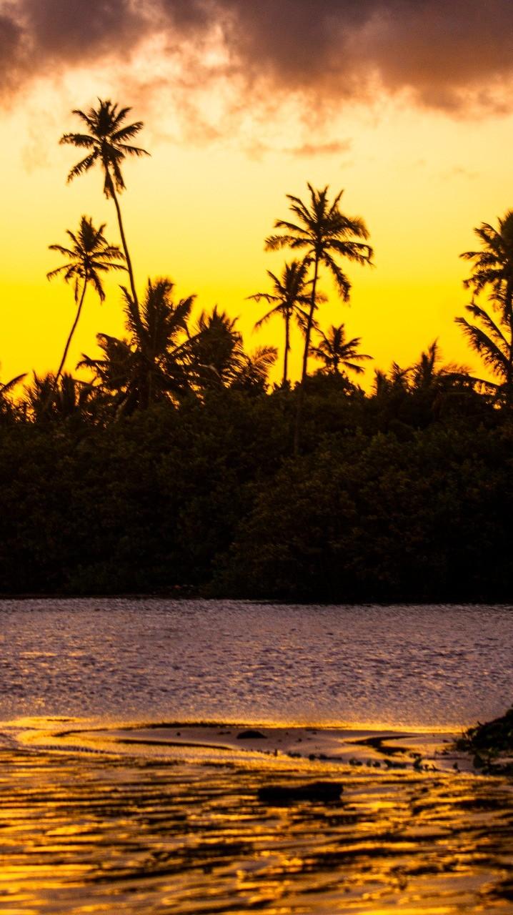 Golden Sunset  por Daniel Cruz.