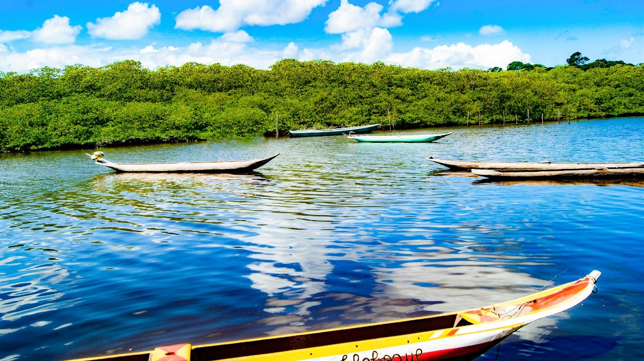 Canoas Maragojipe por Daniel Cruz.
