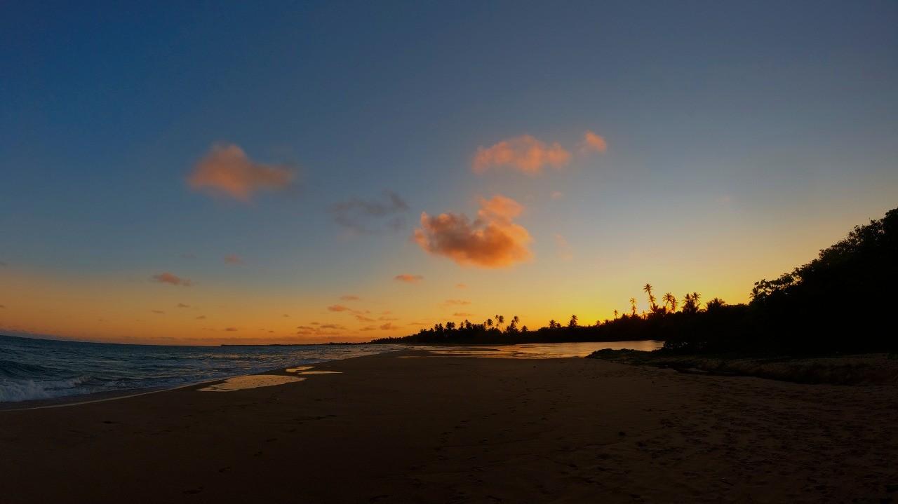 Praia do Forte - Rio e Mar por Daniel Cruz
