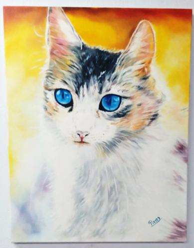 Gato de olhos azuis por Pirres