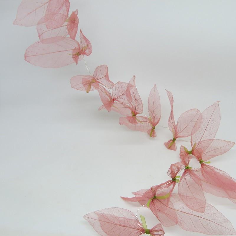 Fio água-viva de bilreiro rosa