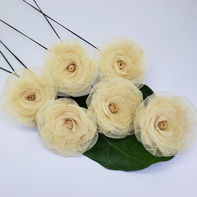 Flores avulsas G