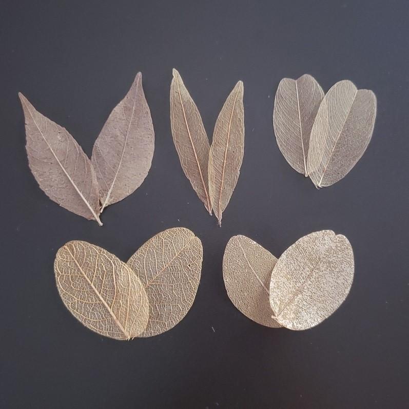 Kit folhas mini - natural (100 unidades)