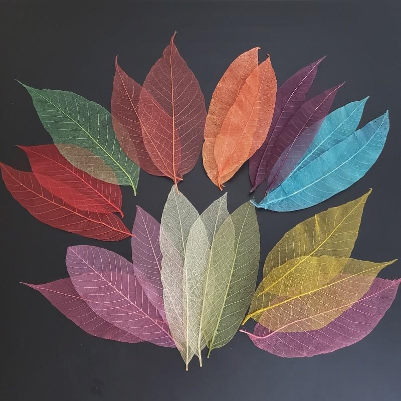 Kit folhas mini, P, M e G - multicoloridas (80 unidades)