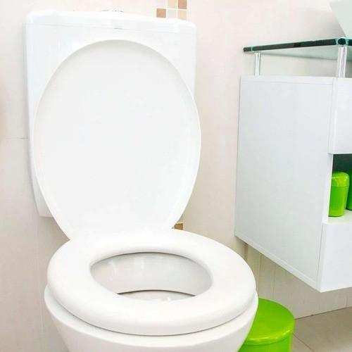 Assento Sanitario Almofadado Branco Astra