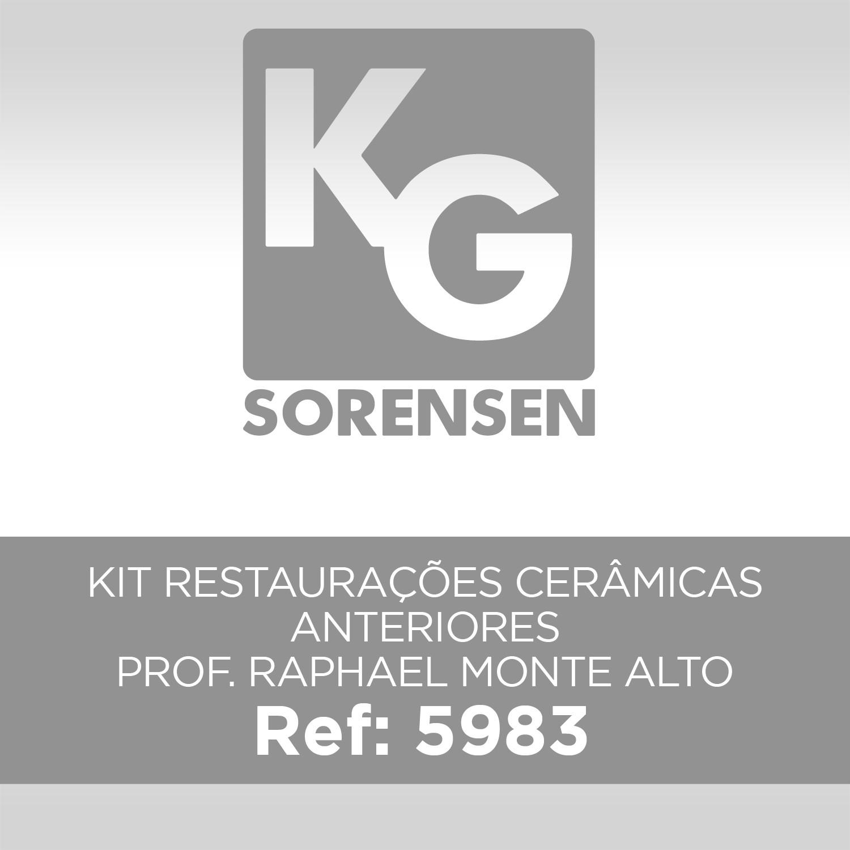 KIT RESTAURAÇÕES CERÂMICAS ANTERIORES / PROF. RAPHAEL MONTE ALTO