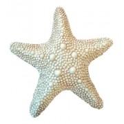 Estrela Marinha Enfeites Casa De Praia Resina Mar 22cm