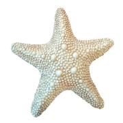 Estrelas do Mar Trio Enfeites para Casa de Praia Resina 22cm