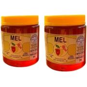 Mel De Abelha Puro Da Serra Catarinense Florada Macieira 2kg