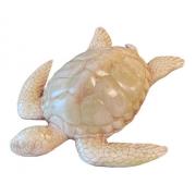 Tartaruga Marinha Decoração Piscina Parede Casa De Praia