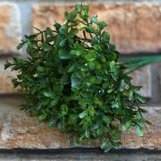 Pick Planta Artificial de Arruda 6 galhos