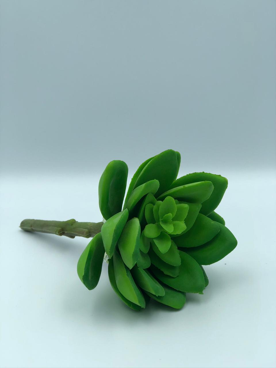 Suculenta Artificial Verde Aberta Emborrachada