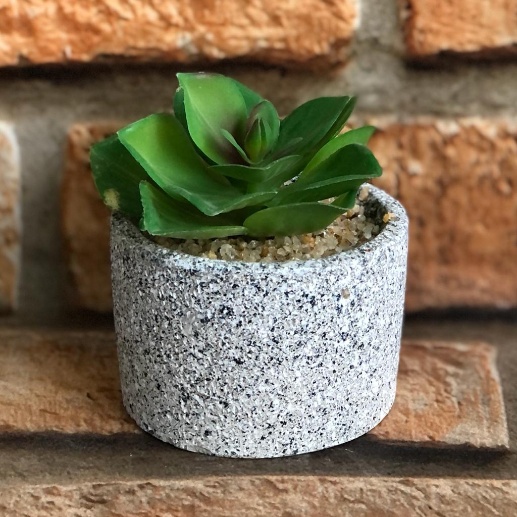 Vaso Decorativo de Cimento com Suculenta e Pedras