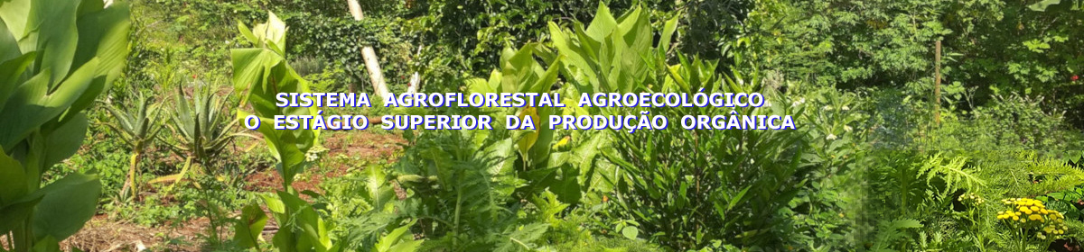 pacha mama agroecologia