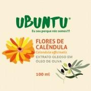 EXTRATO OLEOSO DE FLORES DE CALÊNDULA - OLIVA - 100 ML