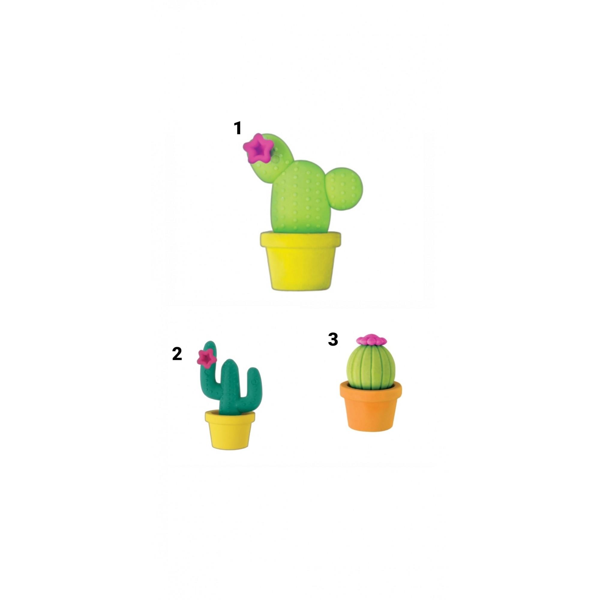 Borracha Cactus