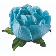 Forminha Bela Azul Piscina