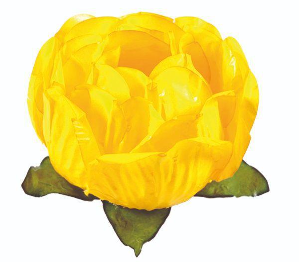 Forminha Bela Amarelo Vivo