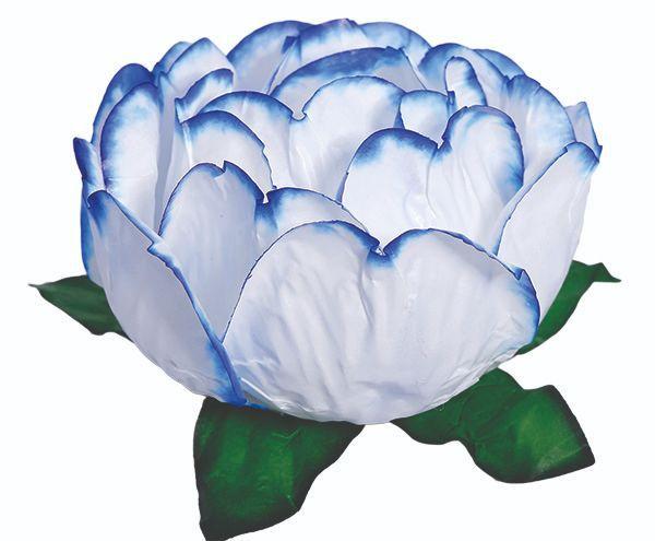 Forminha Bela Branco Borda Azul