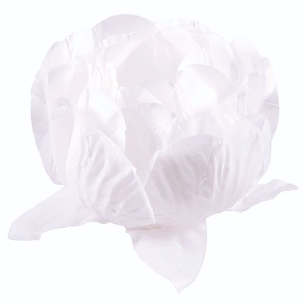 Forminha Bela Branco / Branco